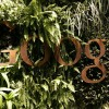 'Misleading' and 'Deceptive': Google Under Fire