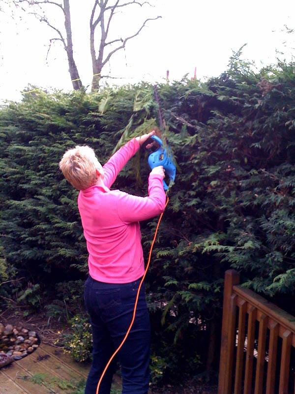 Hedge Trimmer for Web