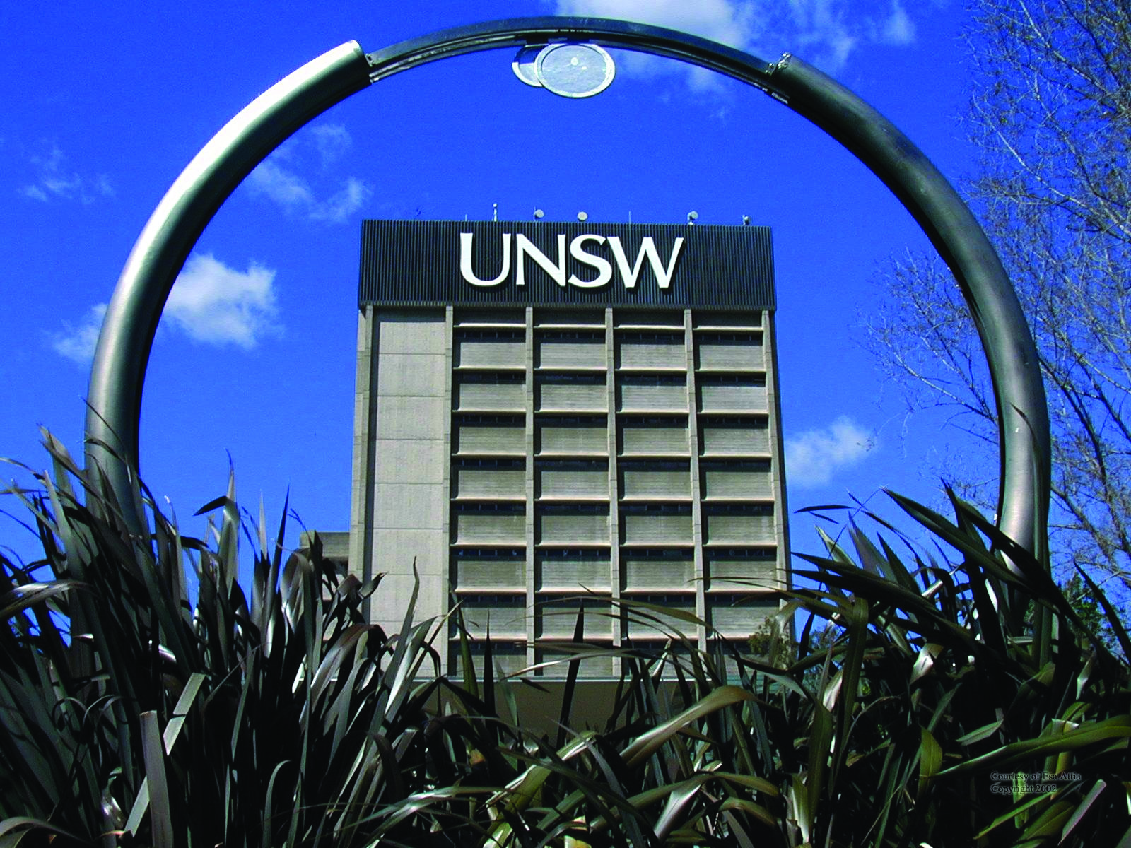Phd thesis unsw