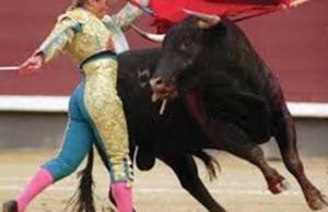 Ivan's Bull