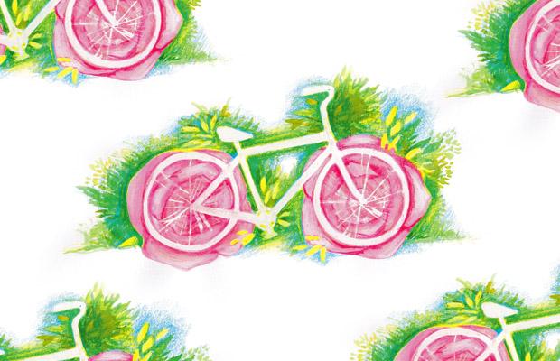 bikezzzz