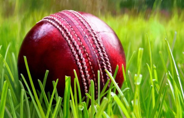 cricket_ball_by_hedgehog_the_hermit-d6sqiom