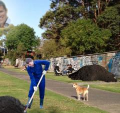 greyhound-photoshop