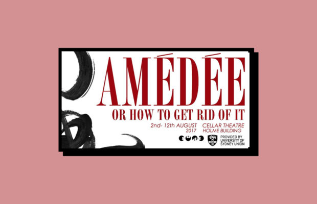 amedee feature image