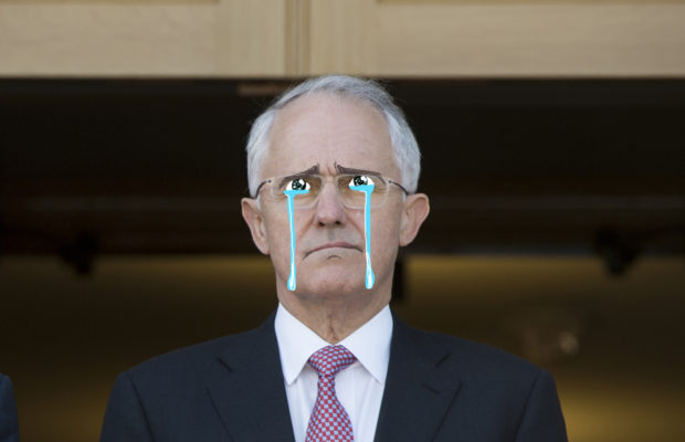 Artist's impression of Malcolm at the press conference.