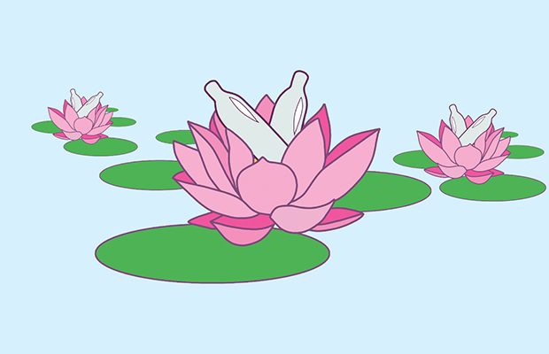 three pink lotuses with nangs nestled inside them
