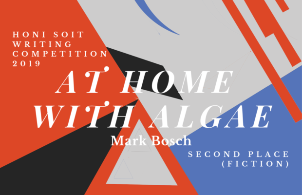 "An abstract background of red, black, grey and blue, with triangles, lines and crescents. The main text says ""At home with algae."""