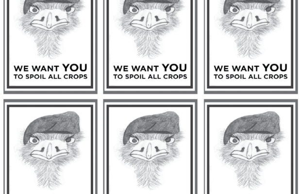 "Repeated image of an emu in style of propaganda poster with text ""we want you to spoil all crops""."