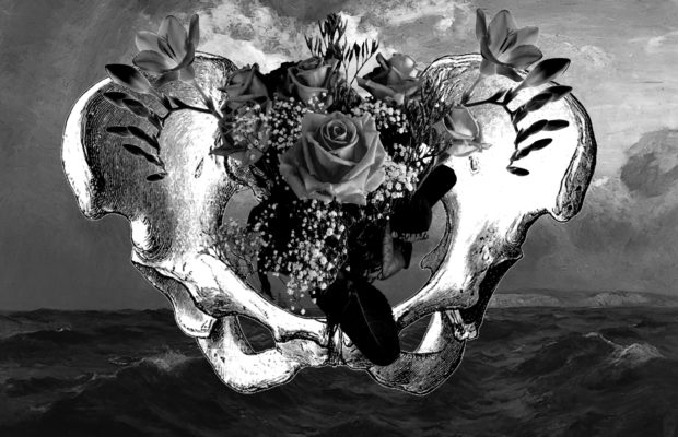 Photograph of a pelvic bone with flowers photoshopped growing out of it in the shape of a uterus. The background features a stormy sea.