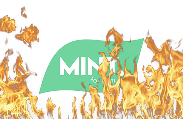 Mint for Honi goes up in flames