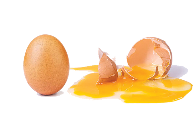 An egg, beside a cracked egg.